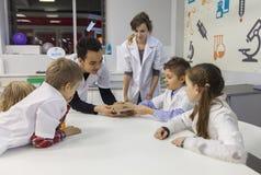 Ragazzi e ragazze nel laboratorio di scienza Fotografia Stock Libera da Diritti