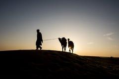 Ragazzi indiani della mucca Immagini Stock Libere da Diritti