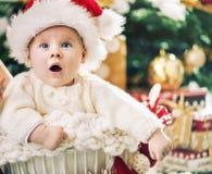 Ragazzino affascinante con un albero di Natale nei precedenti Fotografie Stock Libere da Diritti