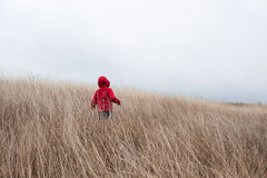 Ragazzino che cammina nell'erba asciutta Immagine Stock Libera da Diritti