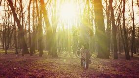 Ragazzino che guida la bicicletta nel parco, parco del tramonto, movimento lento stock footage