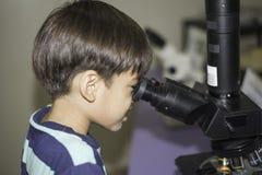 Ragazzino che impara la classe di scienza con il microscopio nella classe Fotografia Stock Libera da Diritti