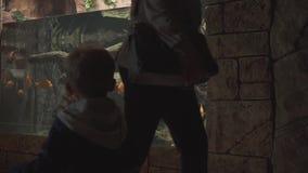 Ragazzino che va in giro lo zoo archivi video