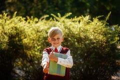 Ragazzino che va indietro al banco Bambino con lo zaino ed i libri sul primo giorno di scuola Fotografia Stock