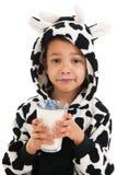 Ragazzino come latte alimentare della mucca Immagini Stock