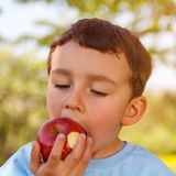 Ragazzino del bambino del bambino che mangia il quadrato all'aperto della frutta della mela all'aperto Immagine Stock Libera da Diritti