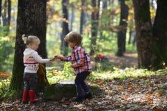 Ragazzino e ragazze che si accampano in legno L'infanzia e l'amicizia del bambino, l'amore ed il fratello e la sorella della fidu Immagine Stock