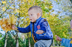 Ragazzino emozionante con i fogli di autunno Fotografie Stock Libere da Diritti