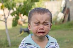 Ragazzino gridante gridi Ritratto del ragazzo Il bambino caucasico esamina la macchina fotografica Il ragazzo incantante il bambi fotografia stock