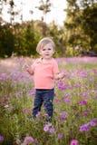 Ragazzino nel prato dei fiori porpora un giorno soleggiato, bambino nel campo dei fiori Fotografia Stock