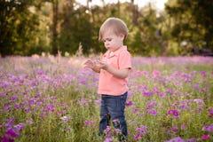 Ragazzino nel prato dei fiori porpora un giorno soleggiato, bambino nel campo dei fiori Immagini Stock Libere da Diritti