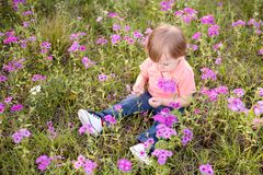 Ragazzino nel prato dei fiori porpora un giorno soleggiato, bambino nel campo dei fiori Immagine Stock