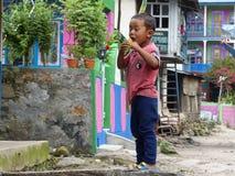Ragazzino nel villaggio di Jagat Immagini Stock
