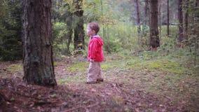 Ragazzino sveglio che cammina nella foresta attraverso il legno da solo Esplorazione del territorio archivi video