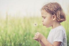 Ragazzino sveglio che gioca con i fiori in parco fotografia stock libera da diritti