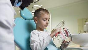 Ragazzino sveglio che spazzola modello di plastica dei denti sotto la supervisione del dentista video d archivio