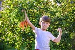 Ragazzino sveglio che tiene un mazzo di carote organiche fresche in giardino domestico Stile di vita sano della famiglia Tempo di immagine stock
