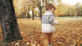 Ragazzino sveglio divertente felice che investe le foglie cadute tramite il vicolo stupefacente di autunno nel movimento lento de video d archivio