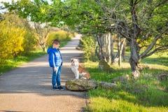 Ragazzo alla moda bello sveglio che gode del parco colourful di autunno con il suo cane inglese rosso e bianco del migliore amico Immagini Stock Libere da Diritti