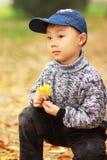 Ragazzo asiatico all'autunno   Fotografie Stock