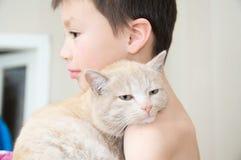 Ragazzo che abbraccia con il gatto dopo avere svegliato, l'animale domestico favorito sulle mani del bambino, le interazioni fra  Immagini Stock