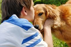 Ragazzo che bacia cane Immagini Stock Libere da Diritti