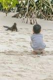Ragazzo che guarda una lucertola alla spiaggia, Galapagos, Ecuador Fotografie Stock
