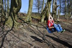 Ragazzo che oscilla negli alberi Fotografie Stock Libere da Diritti