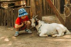 Ragazzo che si siede vicino ad una capra bianca, amicizia fra un bambino e un animale in zoo contatto dello zoo Terapia animale immagini stock