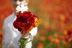 Ragazzo con il mazzo dei fiori selvaggi in una mano fotografia stock libera da diritti