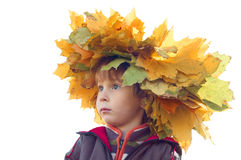 Ragazzo con il sopporto per anima delle foglie di acero gialle Immagine Stock