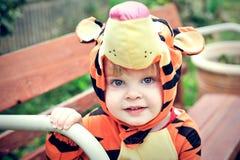 Ragazzo in costume della tigre immagini stock libere da diritti