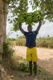 Ragazzo degli agricoltori con il casco di banane Immagini Stock