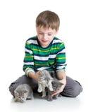 Ragazzo del bambino con i gattini su fondo bianco Fotografie Stock
