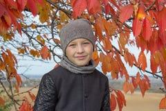 Ragazzo del ritratto in autunno, c'era un ragazzo sotto un albero di autunno con le foglie rosse immagine stock