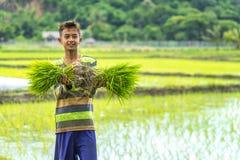 Ragazzo dell'agricoltore Fotografia Stock Libera da Diritti