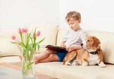Ragazzo della lettura con il cane da lepre sul sofà nella casa accogliente Immagine Stock