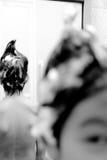 Ragazzo dello sciampo Fotografia Stock