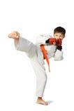 Ragazzo di Aikido Fotografie Stock