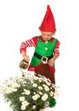 Ragazzo di gnome del giardino con le margherite Immagini Stock Libere da Diritti
