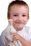 Ragazzo divertente con il pollo fotografia stock libera da diritti