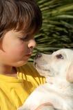 Ragazzo e cane fotografie stock
