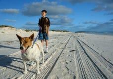 Ragazzo e cane sulla spiaggia immagine stock