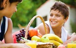 Ragazzo felice due sul picnic Fotografia Stock Libera da Diritti