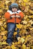 Ragazzo in foglie di autunno fotografia stock libera da diritti