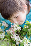 Ragazzo nel giardino di primavera Immagini Stock Libere da Diritti
