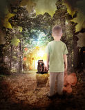 Ragazzo perso in legno di sogno con l'animale dell'orso Fotografie Stock