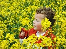 Ragazzo in seme di ravizzone Fotografia Stock