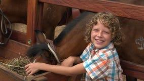 Ragazzo sorridente all'azienda agricola del cavallo archivi video
