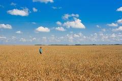 Ragazzo su un campo di frumento Immagine Stock